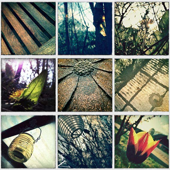 home-collage-kl.jpg